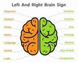 intuitive brain